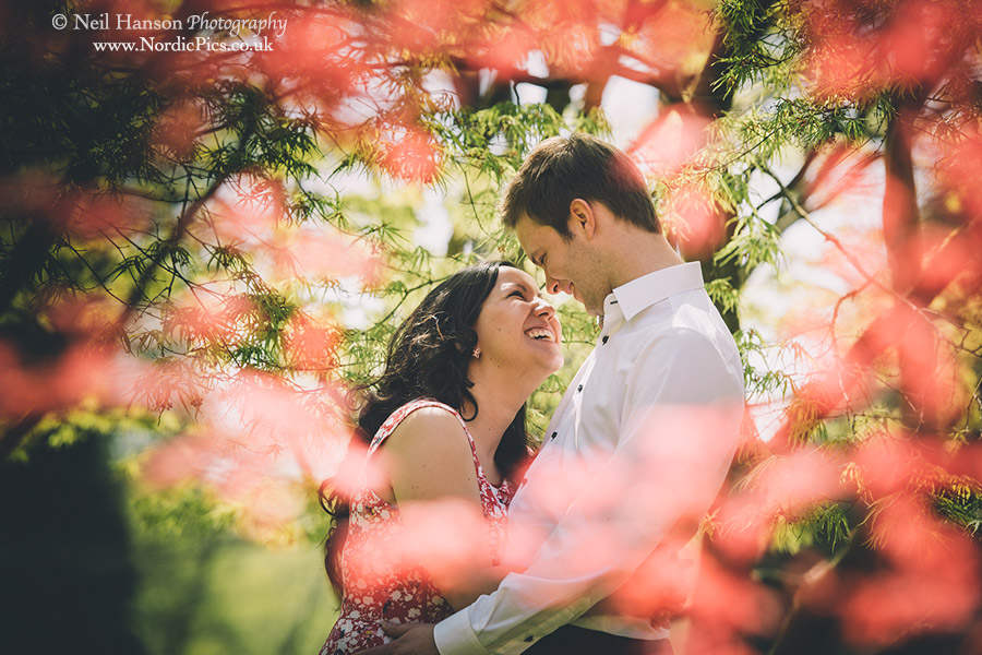 Valley-Gardens-Engagement-01